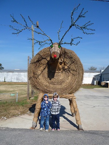Visiting the Hay Bale Reindeer in Jay, FL
