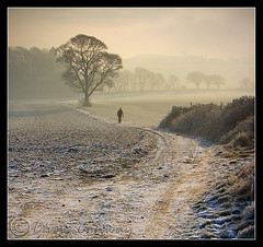 Without.... (Digital Diary........) Tags: trees mist sunrise frost freezing icy crank chrisconway billinge