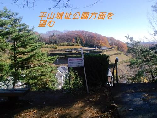 晩秋の長沼公園 (17)