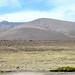 Reserva Nacional Salinas y Aquada Blanca II Peru