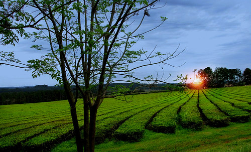 "Peldaños y Espejos • <a style=""font-size:0.8em;"" href=""http://www.flickr.com/photos/30735181@N00/5262409924/"" target=""_blank"">View on Flickr</a>"