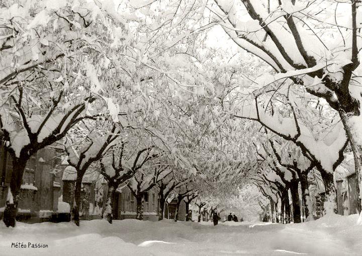 avenue d'Avezzano en Italie ensevelie sous la neige en février 1956