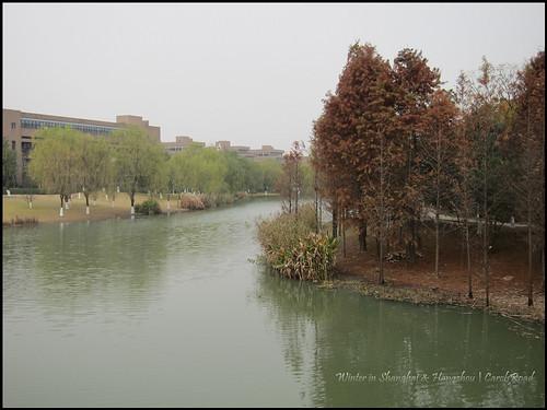 2010-12-08 Shanghai 047P12