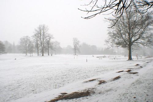 Winter Scene, Rouken Glen