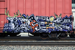 Deer Hunter (everkamp) Tags: seattle railroad graffiti washington character trains deer explore freight bnsf boxcars tko baer deerhunter btr rollingstock railart benching