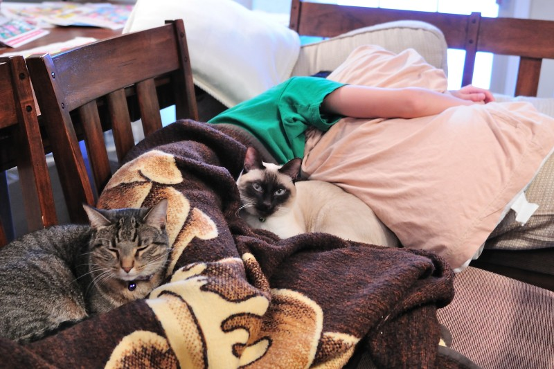 10.12.19 - Cuddled Up