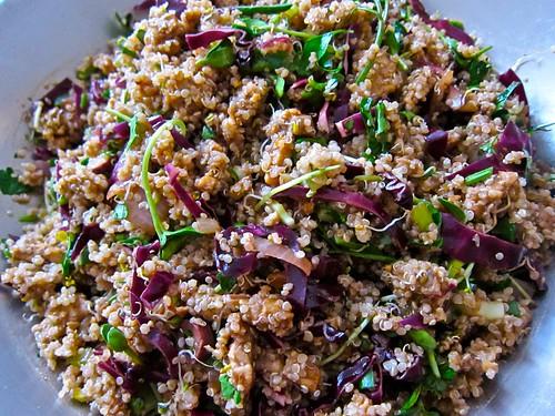 Quinoa Greatness