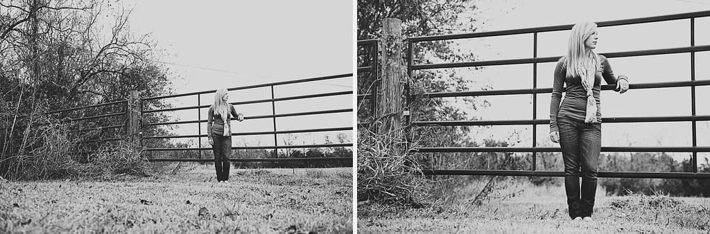 collage2frames