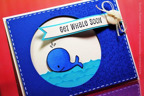 Get Whale Soon (3)