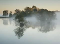 Silence (Duncan George) Tags: city uk autumn mist lake london nature landscape landscapes nikon surrey richmondpark penponds treesinmist d700 lowerpenpond