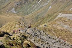 Descending to Forest Burn Shelter