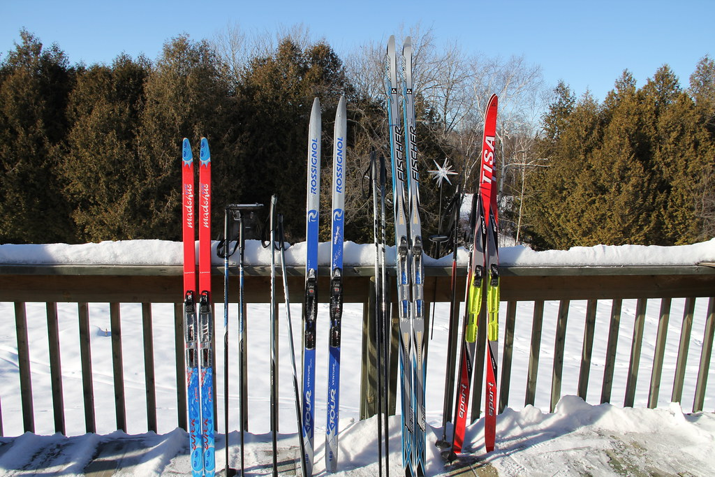 Pretty skis all in a row