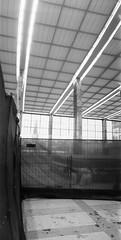 Rebuilding Western Railway Station Vienna - Neubau, Umbau Westbahnhof Wien, Mariahilf (hedbavny) Tags: vienna wien autumn winter summer panorama tower art film church station analog train 35mm studio austria sketch sterreich spring lomo lomography track sommer kunst diary horizon herbst jahreszeit kirche railway zug bahnhof demolition sketchbook september baustelle note railwaystation trail melancholy turm bahn buildingsite tagebuch umbau renovierung bahnsteig neubau frhling rebuilding atelier geleise schiene gleis mariahilf werkstatt buildinglot westbahnhof skizze notiz arbeitsraum europaplatz skizzenbuch horizoncompact westbahnhofwien hedbavny ingridhedbavny