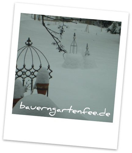 Schneegarten, 28.12.2010