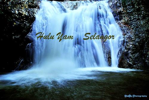 HULU YAM 5 (2)
