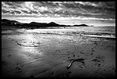 Derrynane Beach (M Fotografie) Tags: ocean ireland houses light sea sky blackandwhite irish white house mountain seascape black mountains cold southwest west beach nature water birds clouds canon dark landscape coast sticks sand europe flickr european skies view 5 south country dramatic eire kerry ring clear 2011 60d flickraward siyahbeyazdler flickraward5 flickrawardgallery