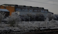 It went white (Tonsils) Tags: uk station graffiti frost dine peterborough ons hoar softrime