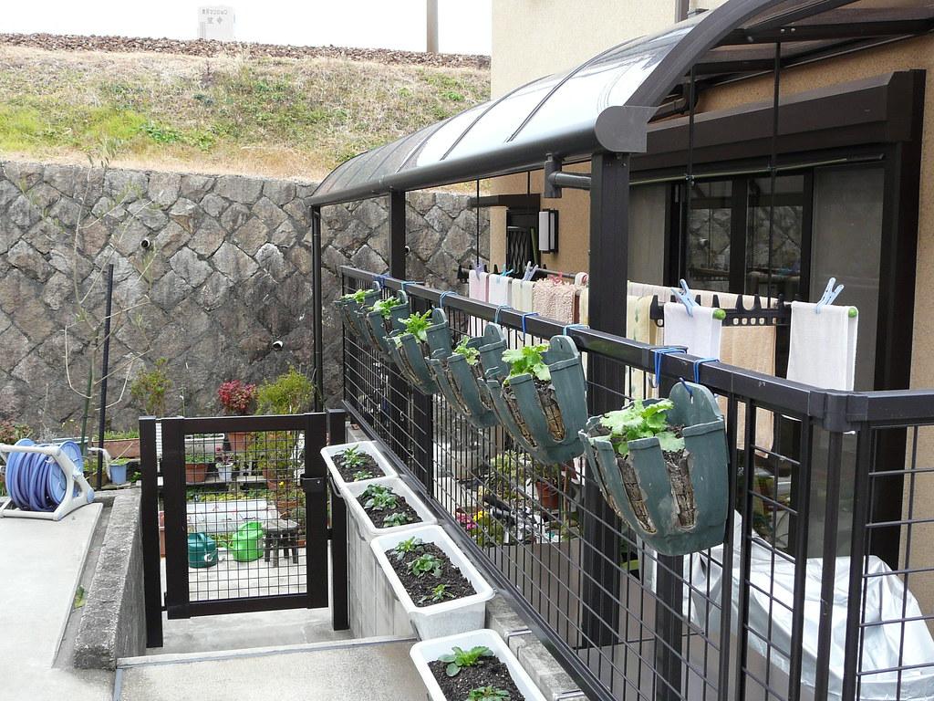 Wire Pot Plant Hangers