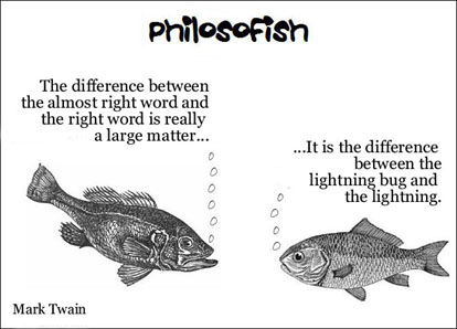 philosofish 25 small
