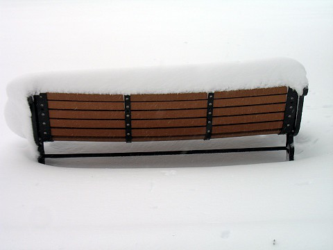 Jan 12 2011 snowstorm 2