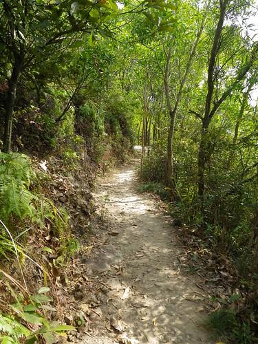 20110106 Exploratory Run