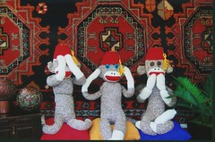 No Evil (monkeymoments) Tags: persia fez sockmonkeys monkeys persiancarpet animalhumor sockmonkeyhumor foreignsockmonkeys