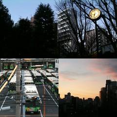 朝ウォーキング(2011/1/14)