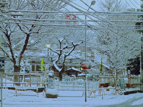 2011-01-16 snowing