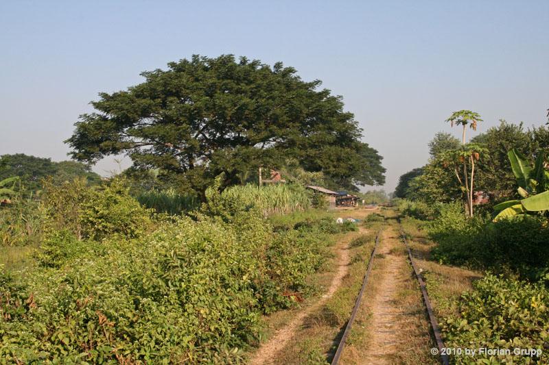 http://farm6.static.flickr.com/5165/5360876592_bbacee32e7_o.jpg