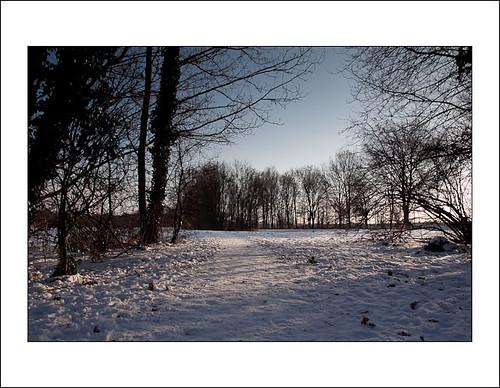 sneeuw in Cronesteijn