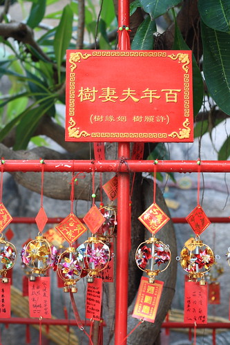 A tree in A-Ma temple to bless loving couples