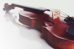 أحبك .. (Q.Gemini ~ [QTR]) Tags: music brown black violin gemini doha qatar كمان do7a qtr قطر الدوحه دوحه كمنجه