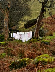 Remote washing line