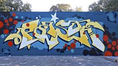 Den Haag Graffiti POISON (Akbar Sim) Tags: poison zuiderpark denhaag agga thehague holland nederland netherlands graffiti akbarsim akbarsimonse
