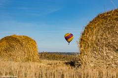 DSC00074.jpg (karinkasky) Tags:  airsiberia  balloon flight