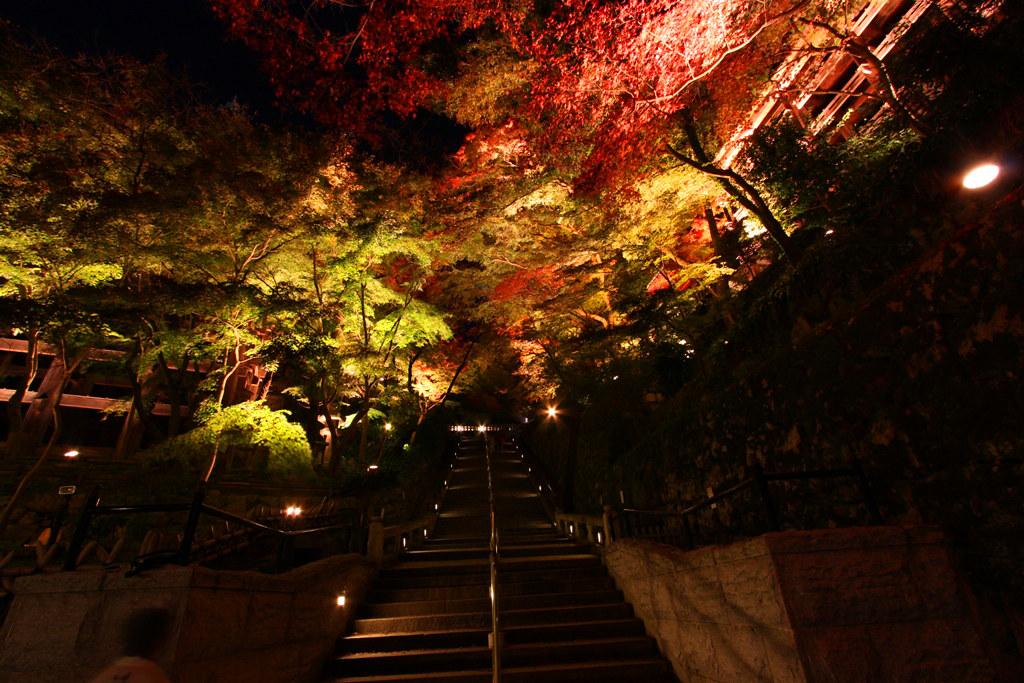 Kiyomizu-dera Illumination 2010  (11)