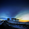 The Dog Walker (Tommimc) Tags: sunset snow walking frost cheshire dusk macclesfield wincle idream —obramaestra— truthandillusion