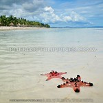 Panglao do-it-yourself (DIY) Day Tour: Dumaluan, Alona, Panglao Church, and Hinagdanan