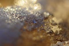 Ice in Sunlight (kellyimorris) Tags: winter snow canada macro ice nikon bc crystal bokeh kelowna 105mm28 d700