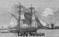 Lady Nelson 1800