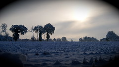 vision différente (Mikkouz) Tags: wild sun snow france tree nature field landscape soleil flickr sony champs bretagne vision neige awards britanny paysage arbre potofgold flickraward snowshot lassac mikkouz