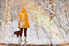 snowcovered hearts [Explore] (laura zalenga) Tags: winter dog sun white snow girl yellow forest ray branch sam sister laurazalenga
