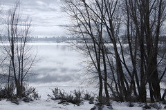Winter at the Lake (Utah Images - Douglas Pulsipher) Tags: trees winter lake snow cold reflection tree water clouds ut frost alone moody gloomy cloudy snowy shoreline overcast frosty monotone chilly lonely banks grayday wasatchmountains pineviewreservoir ogdenvalley huntsvilleutah