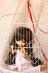 The Red Thread of Fate (Rinoninha) Tags: white blanco jaula doll cage wig pullip prunella mueca peluca leeke obitsu 27cm leekeworld rewigged neliel redthreadoffate lvalizious hilorojodeldestino