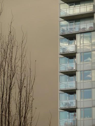 Sky/Building Contrast