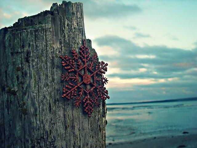 seaflake
