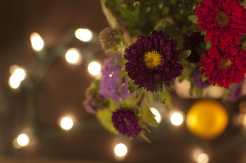 flowers, lights, satsuma