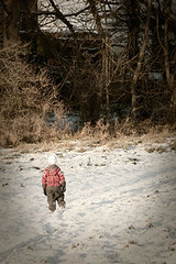 Going home (clarepricephotography) Tags: boy snow playing kid scene sledge sledging