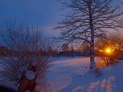 schnee bedeckter weiher (hlh 1960) Tags: schnee trees winter sky sun snow sol sunrise germany deutschland golden soleil petra himmel dezember sonne bäume sonnenaufgang weiher weis theunforgettablepictures saariysqualitypictures