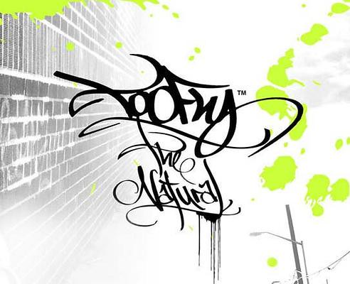 tofly tag